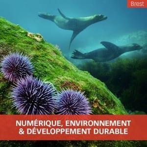 Ingénieur Numérique, environnement et développement durable
