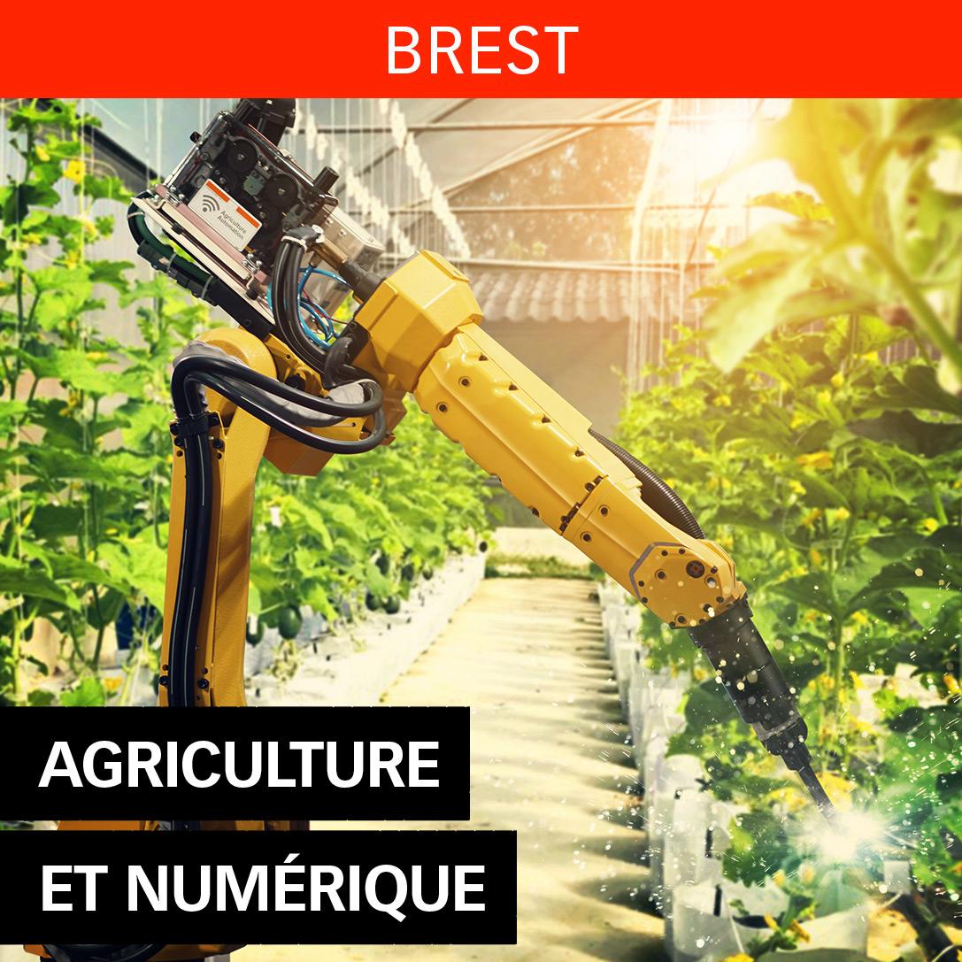 Ingénieur Agriculture